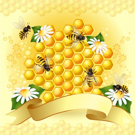 Background with bees, honeycomb and flowers Vector