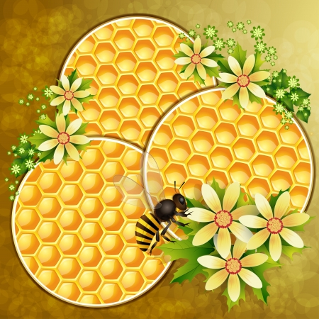Background with honeycomb,honey jar and bees Vector