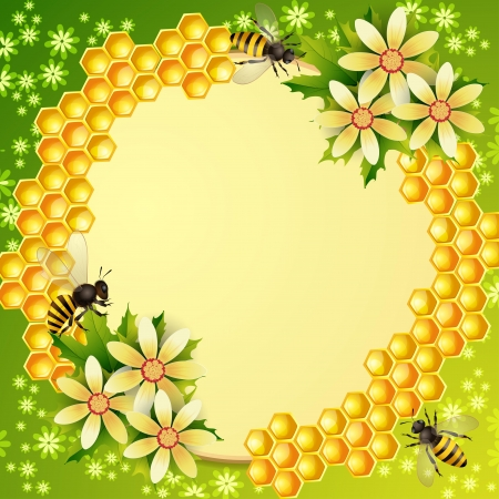honey bees: Background with honeycomb,honey jar and bees