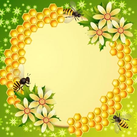 Tło z plastra miodu, słoik miodu i pszczoły