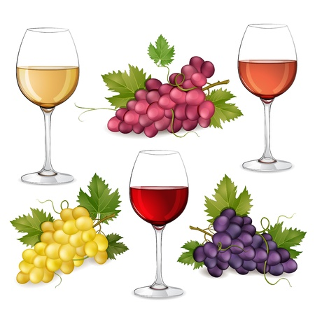 wines: Different varieties of grapes and glasses of wine on white background