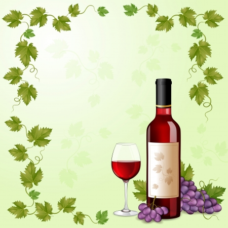 vine and leaves of vine: Red wine bottle Illustration
