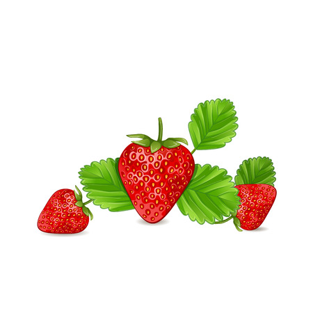 strawberry: Strawberry with leaves isolated on white background. Illustration