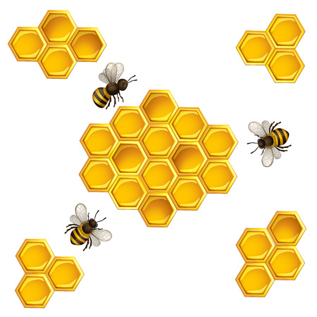 Bees and honeycombs design template Illustration