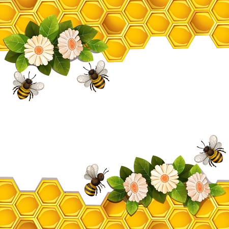 Bees, honeycombs and flowers.