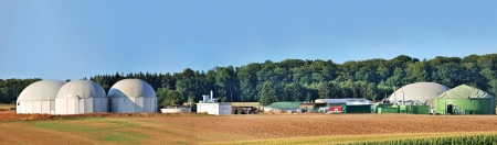 biomass: Bio fuel plant panorama with forest in background