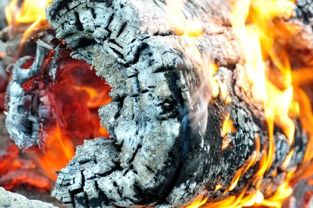 textures: Wooden log brenn am Lagerfeuer.