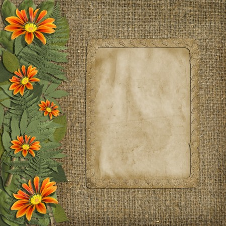 Herbarium of flowers and leaves  with frame on the background of old sacking