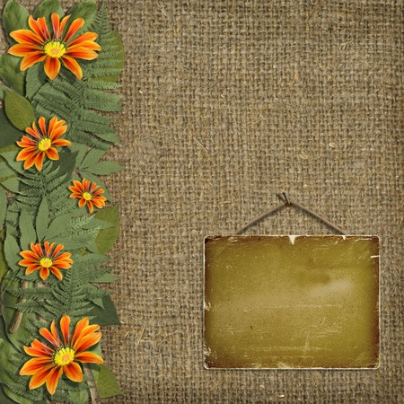 Herbarium of flowers and leaves on the background of old sacking