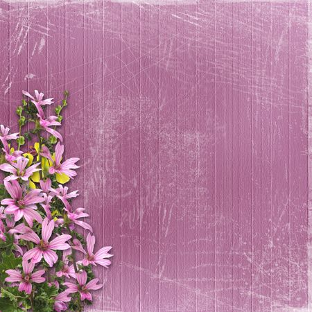 Pink abstract background with floral beautiful bouquet photo