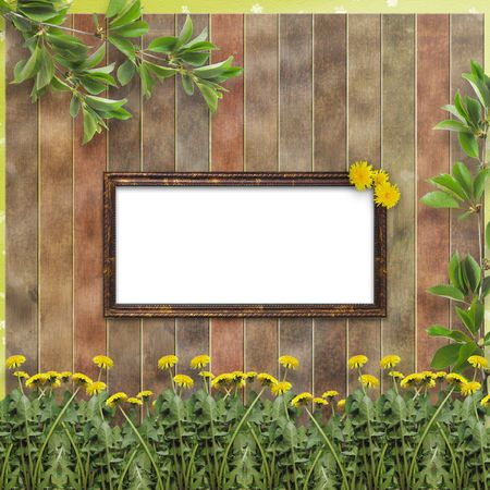 Wooden abstract background with flowers of dandelion