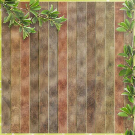 wild nature wood: wooden fence for advertisement with green branches