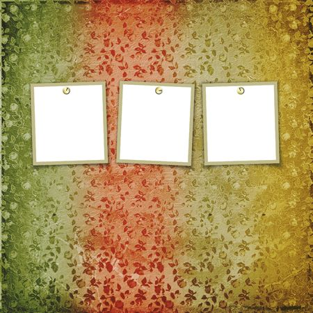 Three frames for photos on the floral background Stock Photo - 4947563