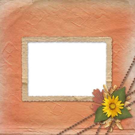 crushed: Herbarium of flowers and leaves on the grunge background with frame