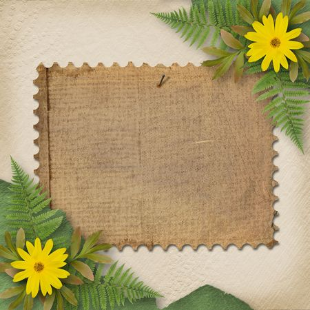 oxeye: Grunge paper with bunch of flower on the abstract background