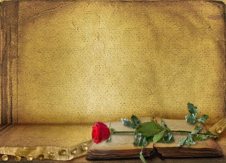 scrap gold: Open ancient book with beautiful red rose