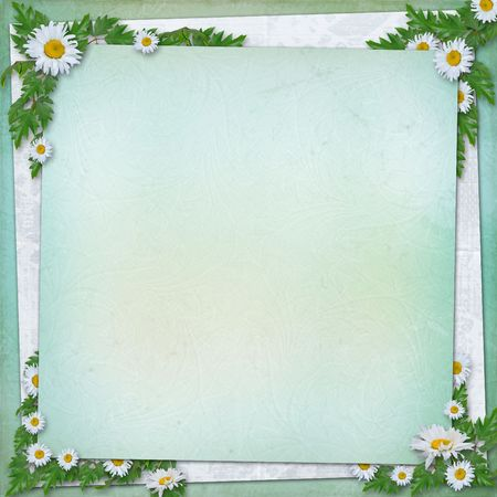 oxeye: Grunge paper in scrapbooking style with bunch of daisy Stock Photo