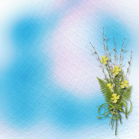 pussy willow: Card for invitation or congratulation with bunch of willow and narcissus