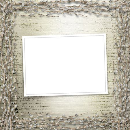 pussy willow: Writing abstract background with frame and bunch of willow