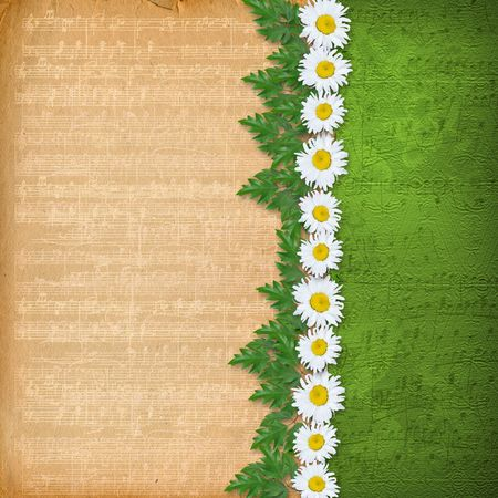 abstract musical background with garland of daisies Stock Photo - 6740676