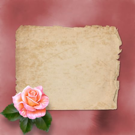 accent:  grunge alienated paper for congratulation with painting rose  Stock Photo