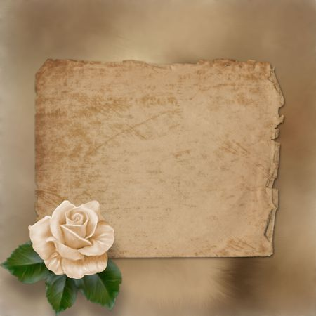 grunge alienated paper for congratulation with painting rose  photo