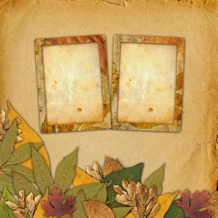 yellow photo: Old grunge frame on the abstract background with autumn leaves