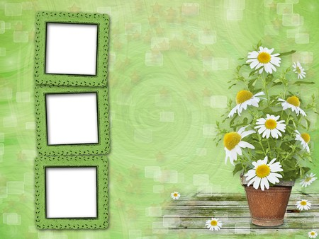 Grunge frames with beautiful bunch of daisy for design Stock Photo