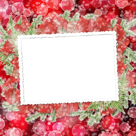 Abstract blur boke background with paper frame and bunch of twigs Christmas trees photo
