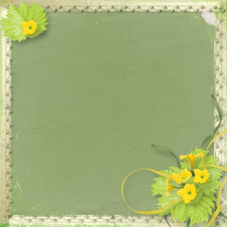 courgette: Grunge paper with flowers pumpkins and ribbons for design