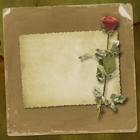 Card for congratulation or invitation with red hearts and red rose
