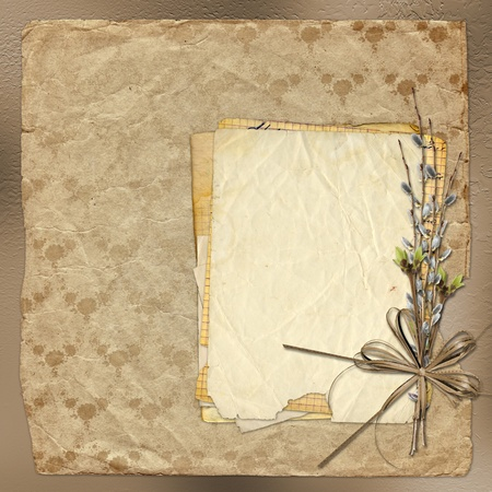 Vintage album with bunch of willow and bow photo
