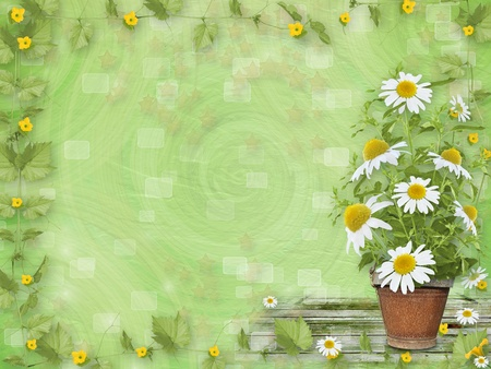 Grunge paper with beautiful bunch of daisy for design photo