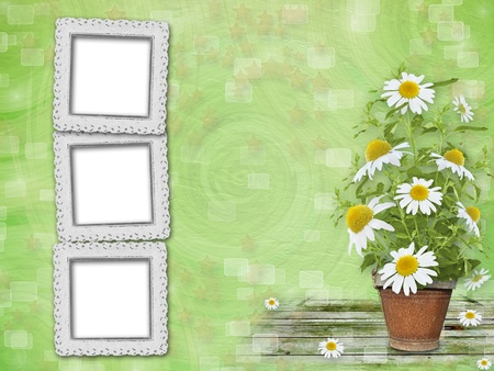 Grunge frames with beautiful bunch of daisy for design photo