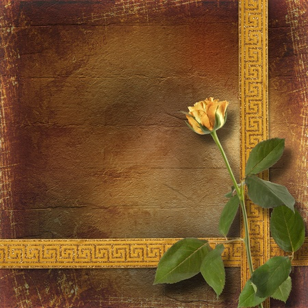 Grunge paper for congratulation with beautiful roses photo