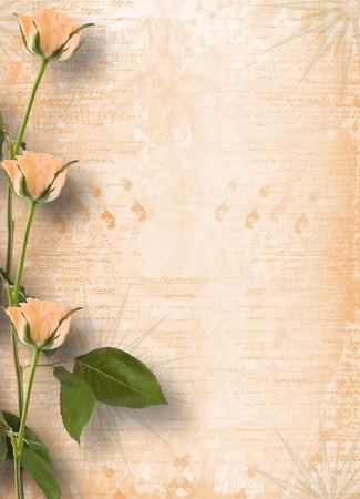 pasteboard: Grunge frame for congratulation with beautiful roses Stock Photo