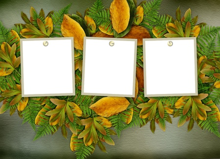 yellow photo: Grunge frame on the old paper for congratulation  Stock Photo