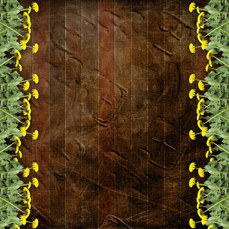 Wooden abstract background with flowers of dandelion  photo