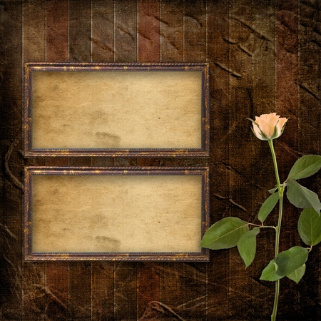 Grunge background for congratulation with beautiful rose photo
