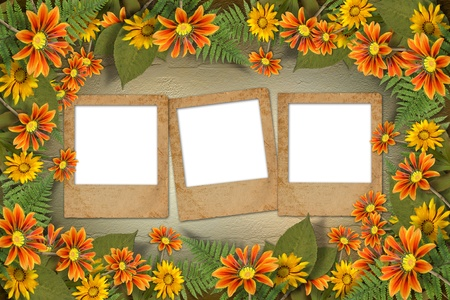 alienated: Herbarium of flowers and leaves on the floral background with frame  Stock Photo