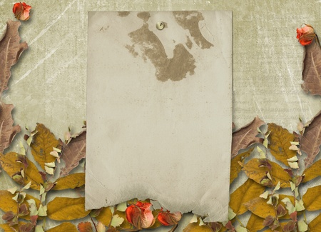 Grunge papers design in scrapbooking style with slides and foliage  photo