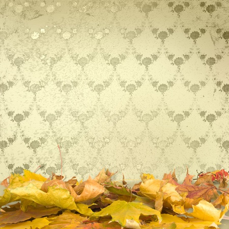 The fallen leaves on the background wall with vintage wallpaper photo