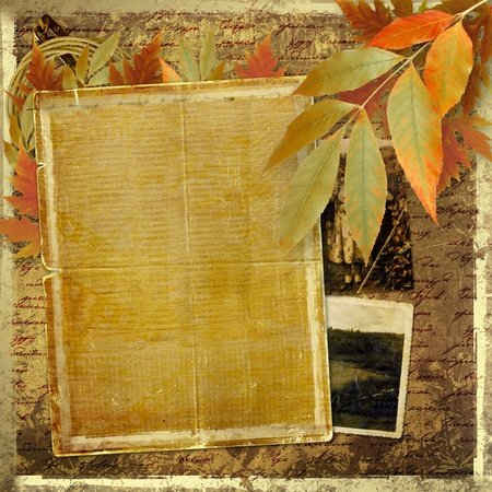 vintage photo album: Grunge papers design in scrapbooking style with foliage and blank for text