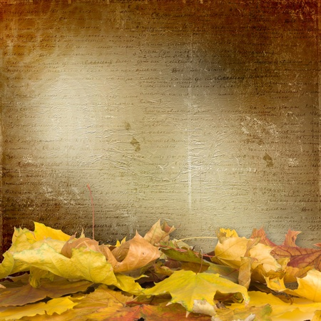 fallen: The fallen leaves on the background wall with vintage wallpaper