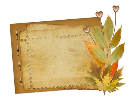 scrap gold: Grunge papers design in scrapbooking style with foliage and hearts