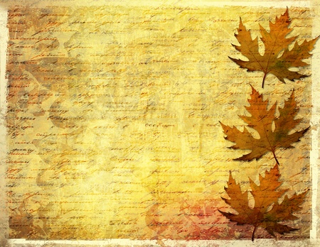 Grunge papers design in scrapbooking style with foliage  photo