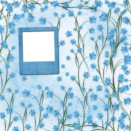 Slides for photos with blue orchids for congratulation photo