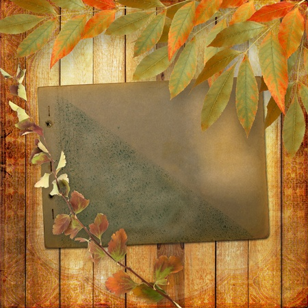 Grunge papers design in scrapbooking style with foliage and page album photo