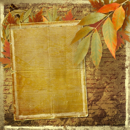 Grunge papers design in scrapbooking style with foliage and blank for text photo
