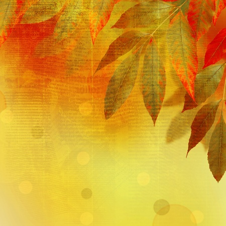 Bright autumn leaves on the abstract background with manuscript photo